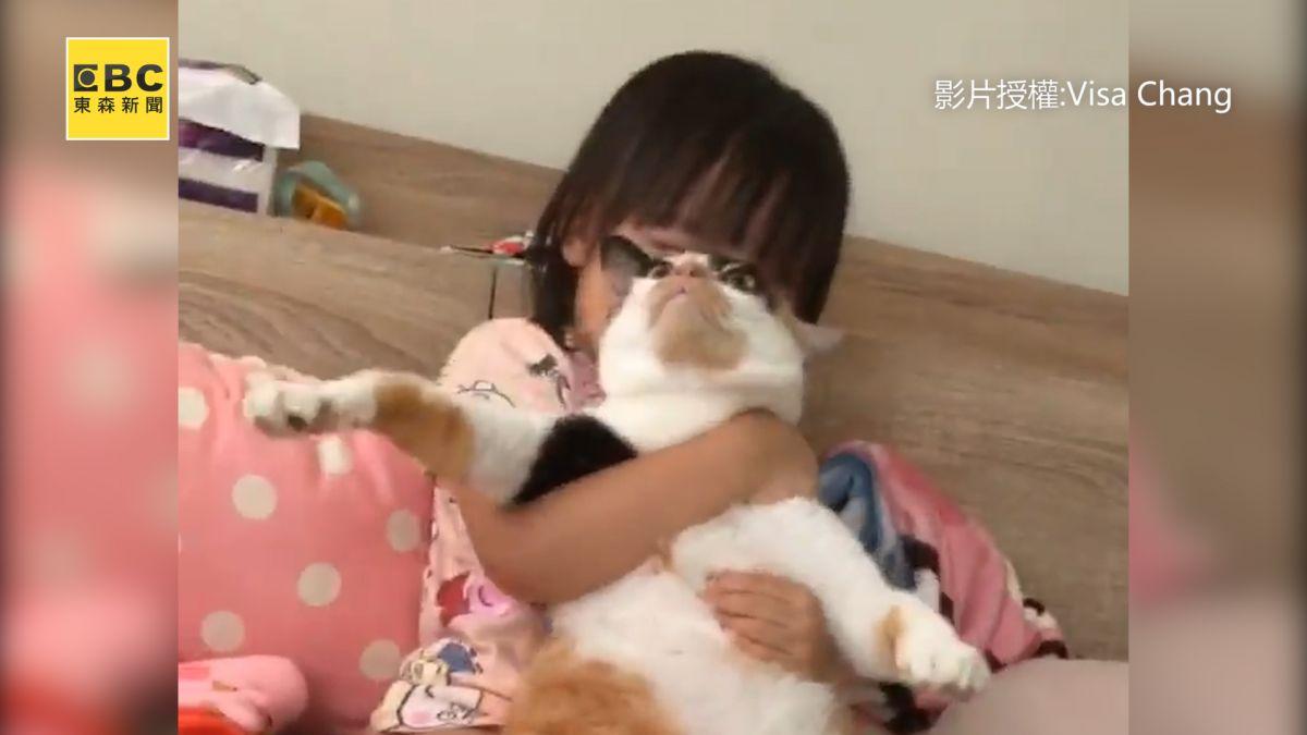 爆笑!小主人強抱看電視 貓咪逃不了眼神死超崩潰