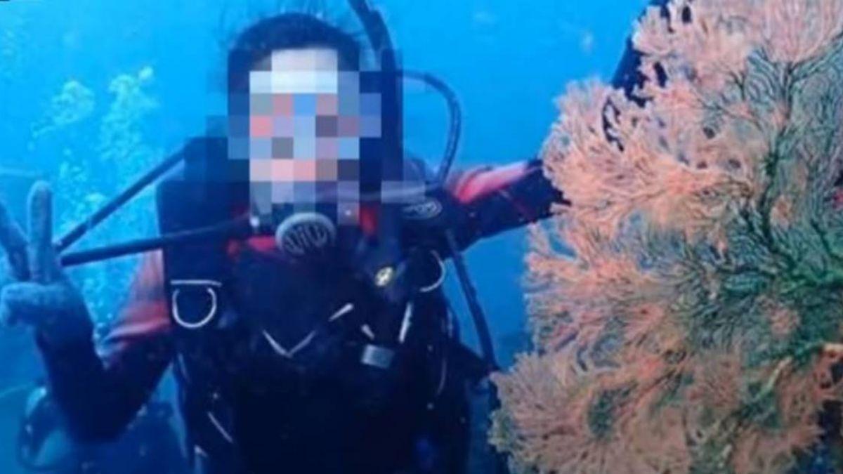 潛水可摸海星、河豚 業者挨轟秒道歉