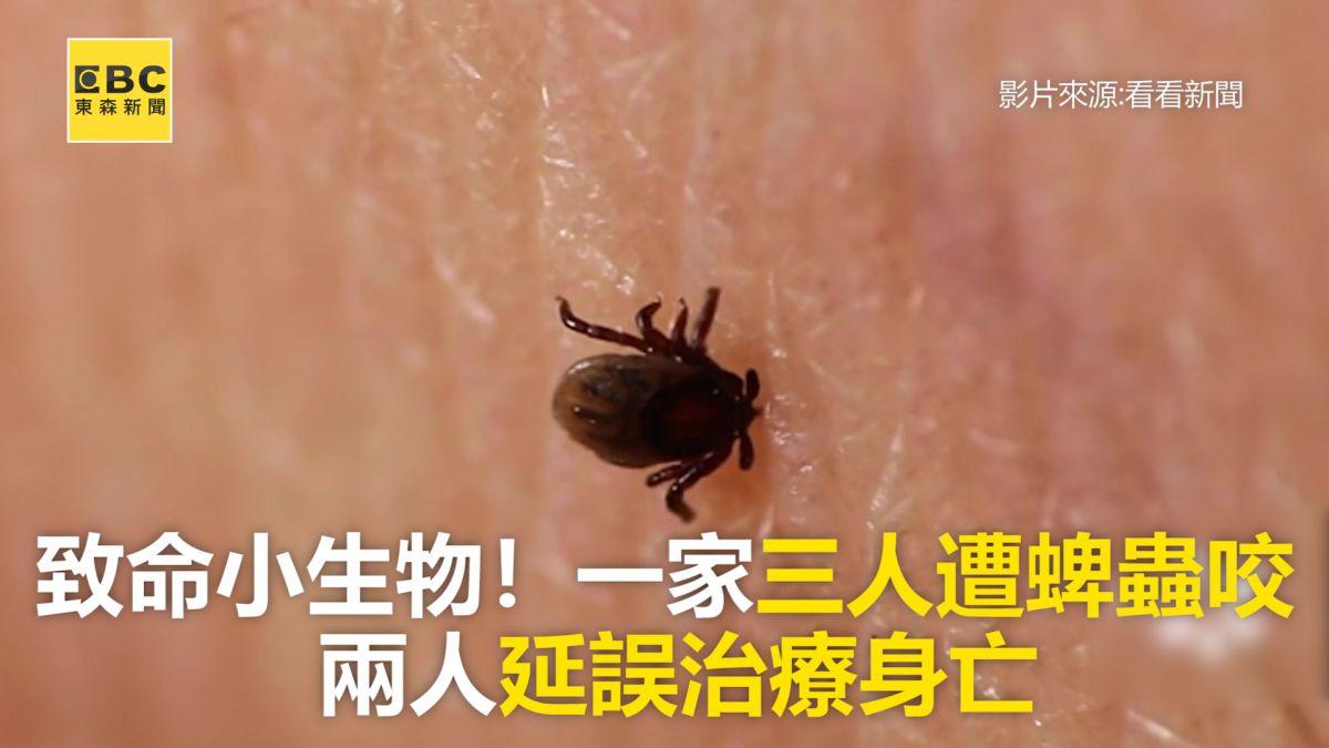 致命小生物!一家三人遭蜱蟲咬  兩人延誤治療身亡