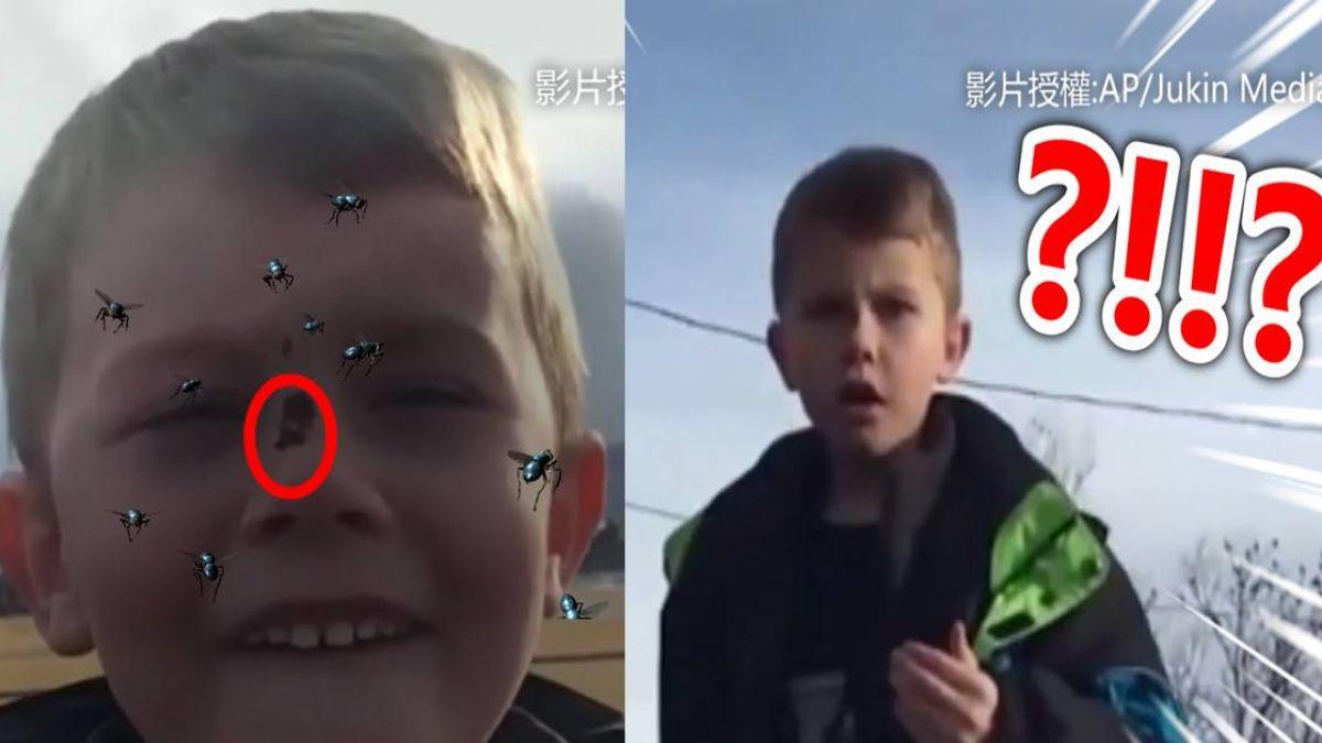 卯死啊?男童賞群鳥 下一秒「黃金」天上降超爆笑