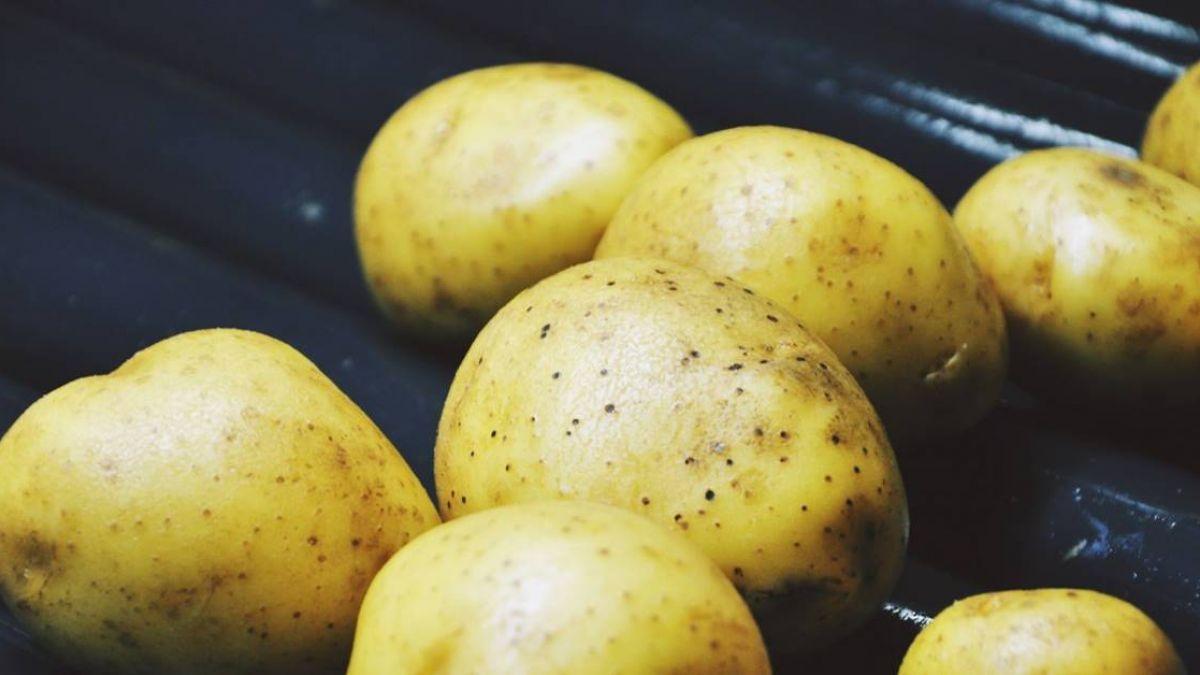 長輩「鉀」飽了嗎?香蕉、馬鈴薯幫助達到飲食需求!