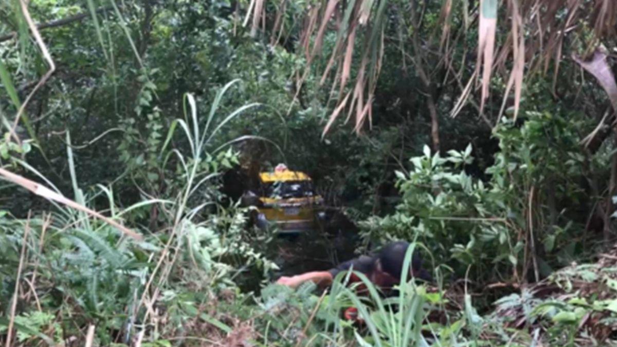 計程車墜15米山谷 幸樹木擋住駕駛命大脫困
