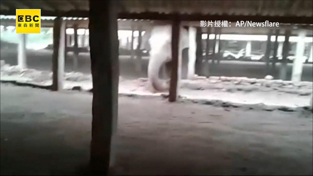 挑釁大象遭霸氣反擊 印男下場超悲劇