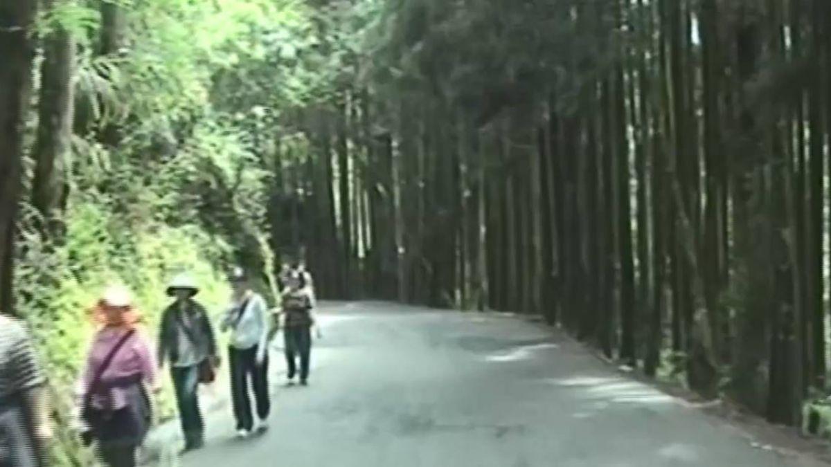 溪頭3「逃票路線」頻傳意外 地險路小登山客愛挑戰