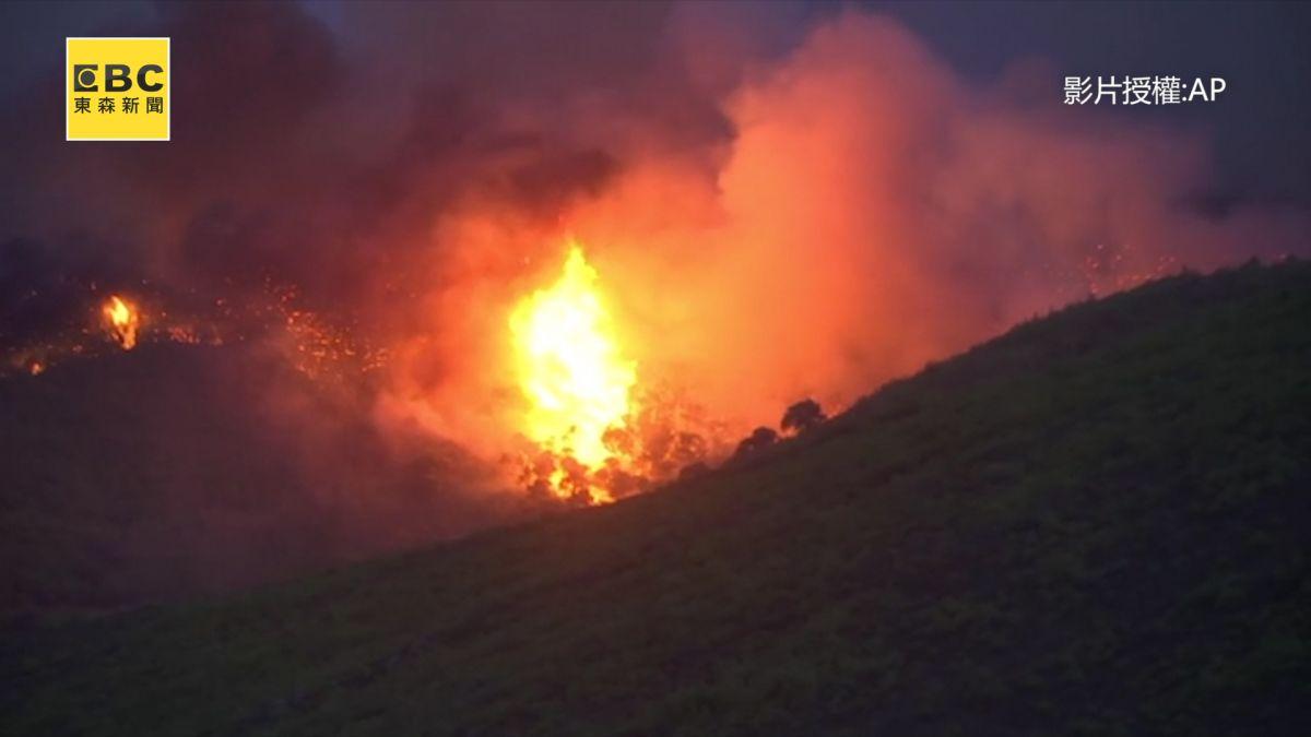 歐洲熱浪!森林野火夾擊希臘 目前已釀百餘人死傷