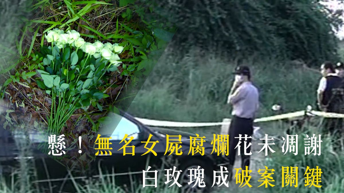 【EBC‧重案組】懸!無名女屍腐爛花未凋謝 白玫瑰成破案關鍵