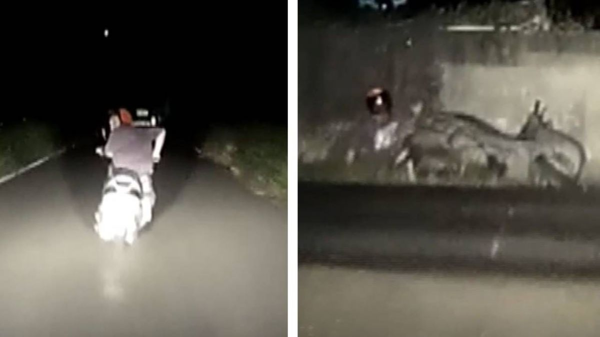 警匪追逐!通緝犯騎車撞牆棄車逃 警逮人跌水溝