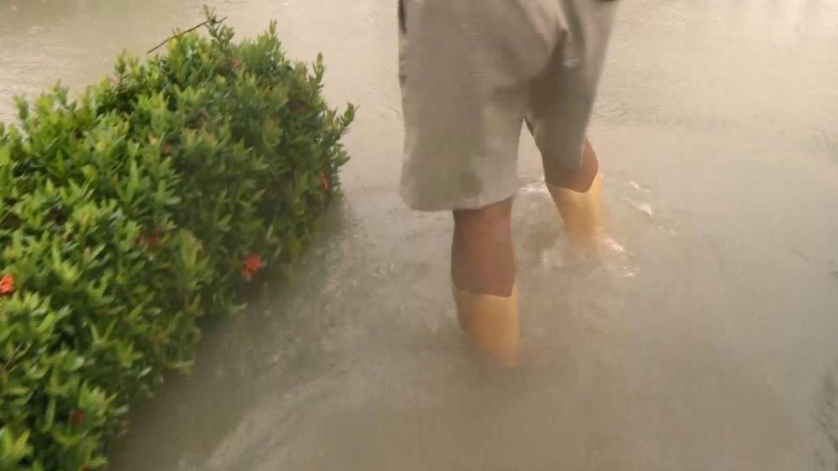 【獨家】謝淑薇成名前的秘密球場 遭泥水淹成泳池