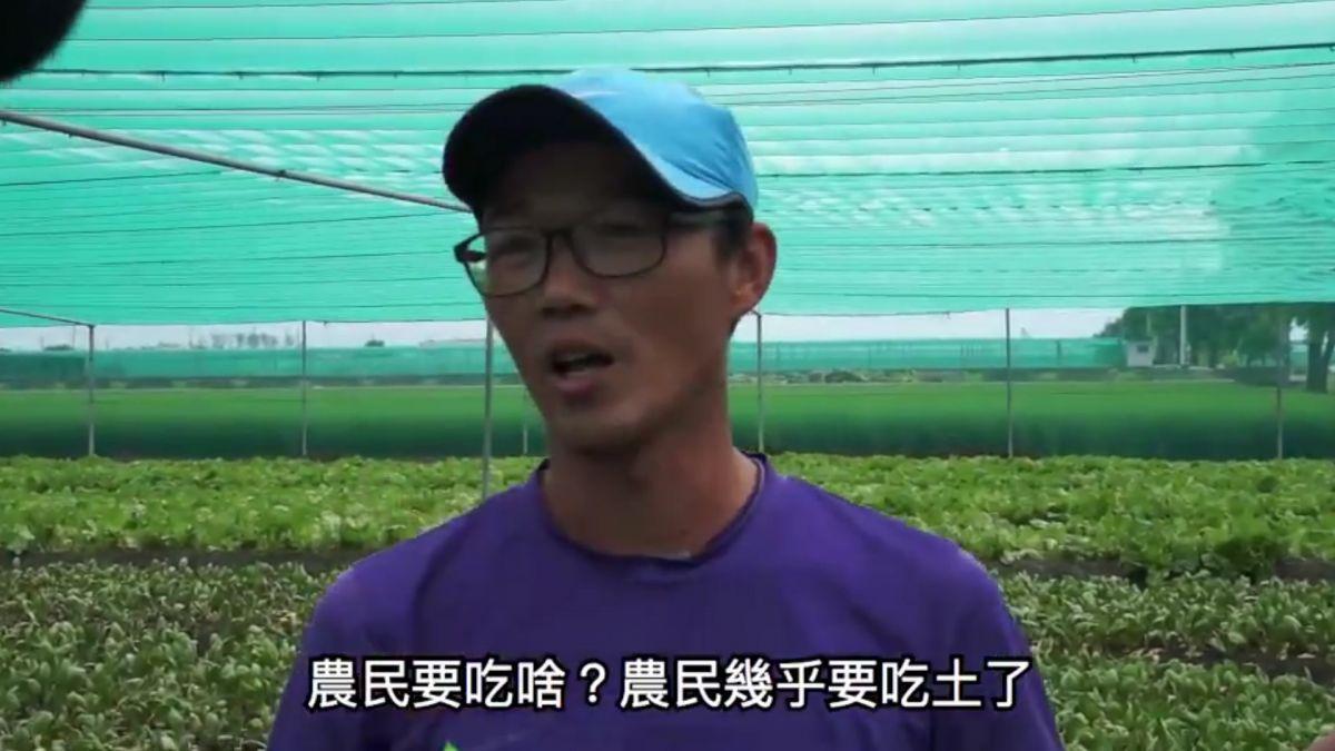 他怒批要吃土了還「平抑菜價」 農糧署回應:沒這件事