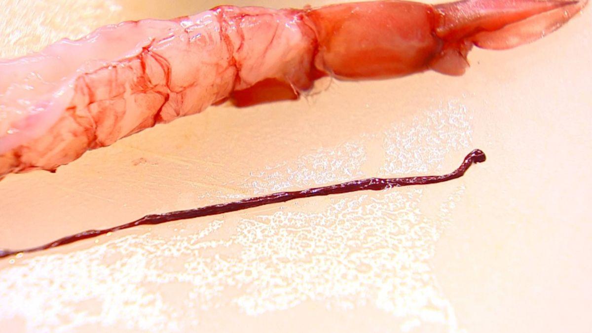 「蝦腸、蝦膏」論戰 民眾PO文酸部落客反道歉
