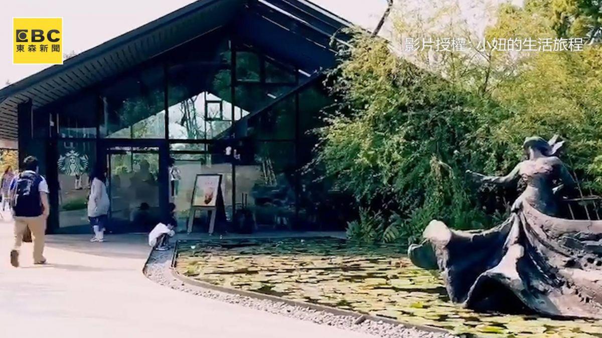 星巴克超夢幻玻璃屋 坐擁綠蔭美景 彷彿置身森林