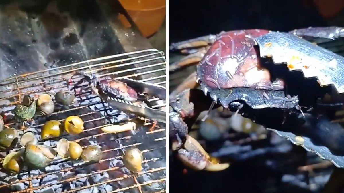 火烤螃蟹…驚見成千上萬寄生蟲蠕動!網崩潰:中秋怎麼烤肉