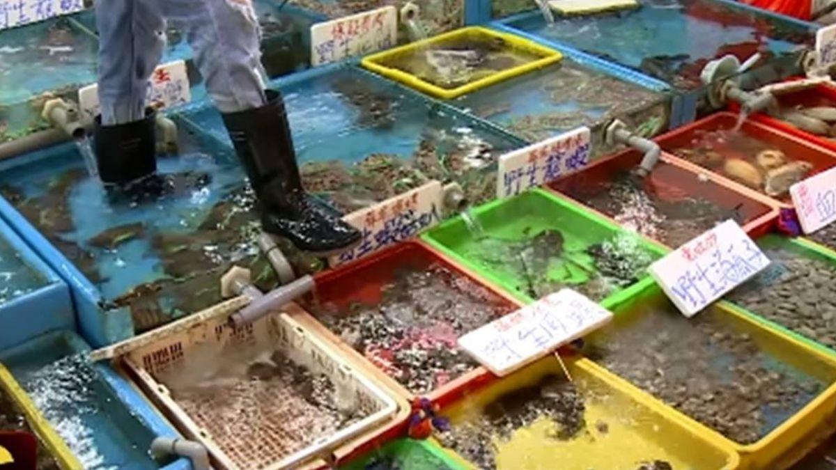 【獨家】碧砂漁港買處女蟳、沙蝦 回家秤重少逾300公克