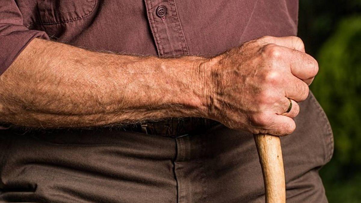 國人愈來愈長壽  平均壽命80.4歲創新高