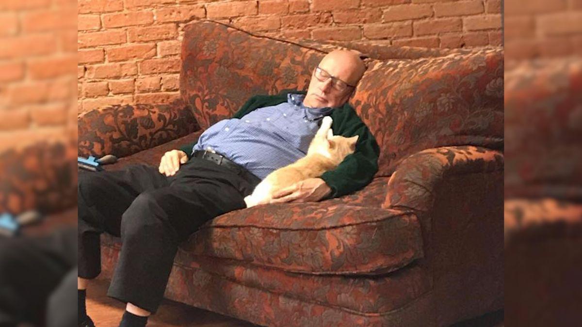 「睡覺也能募款!」75歲貓爺爺與喵同眠 照片曝光 吸金近百萬
