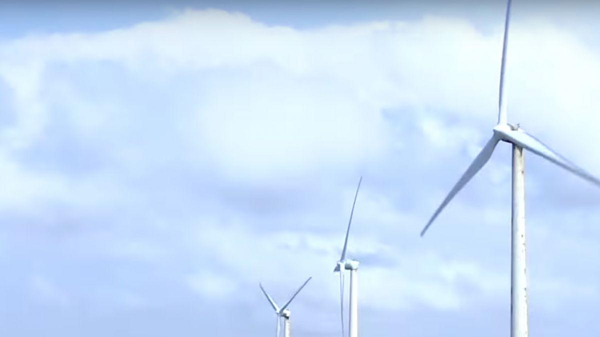 台灣全力推動離岸風電 開創綠能產業商機