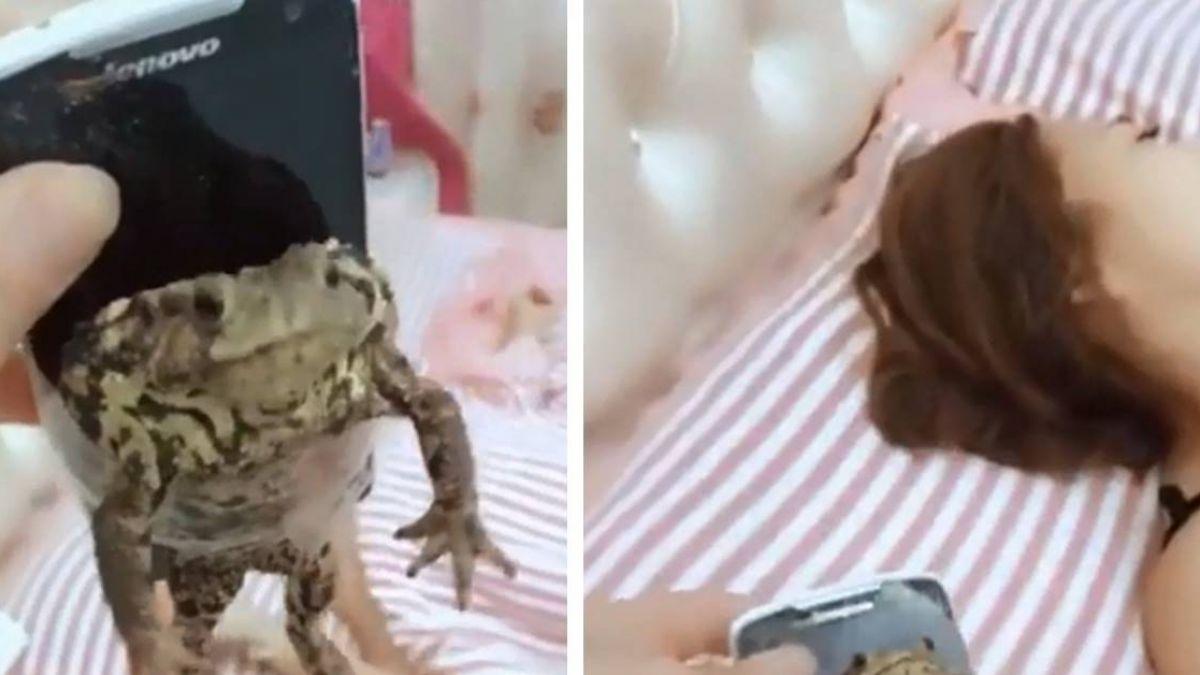 他惡搞做「青蛙手機」整老婆!網見夫最後表情笑翻:還活著嗎