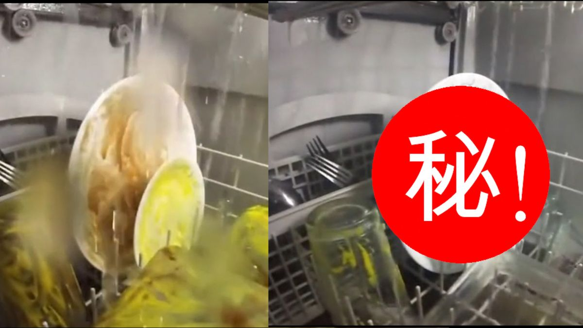 壓力大看這!洗碗機工作超紓壓 網友狂推:小時候超愛看