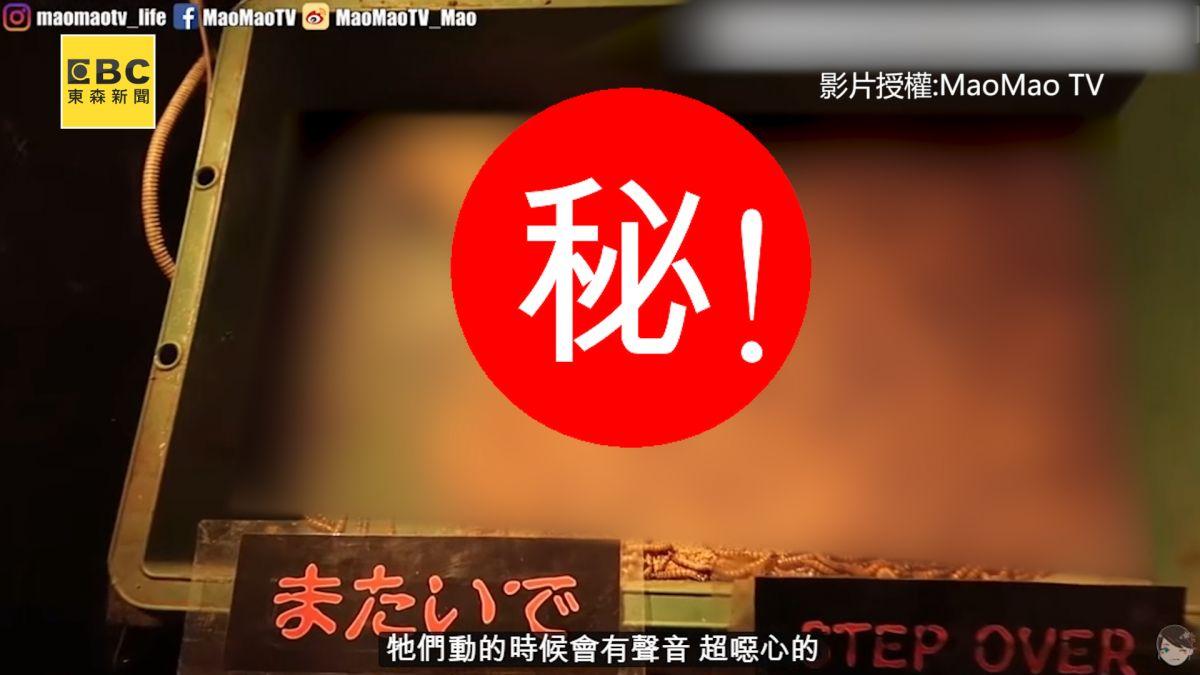 小心屍骨無存!日本最危險動物園  進去要先簽生死狀?!