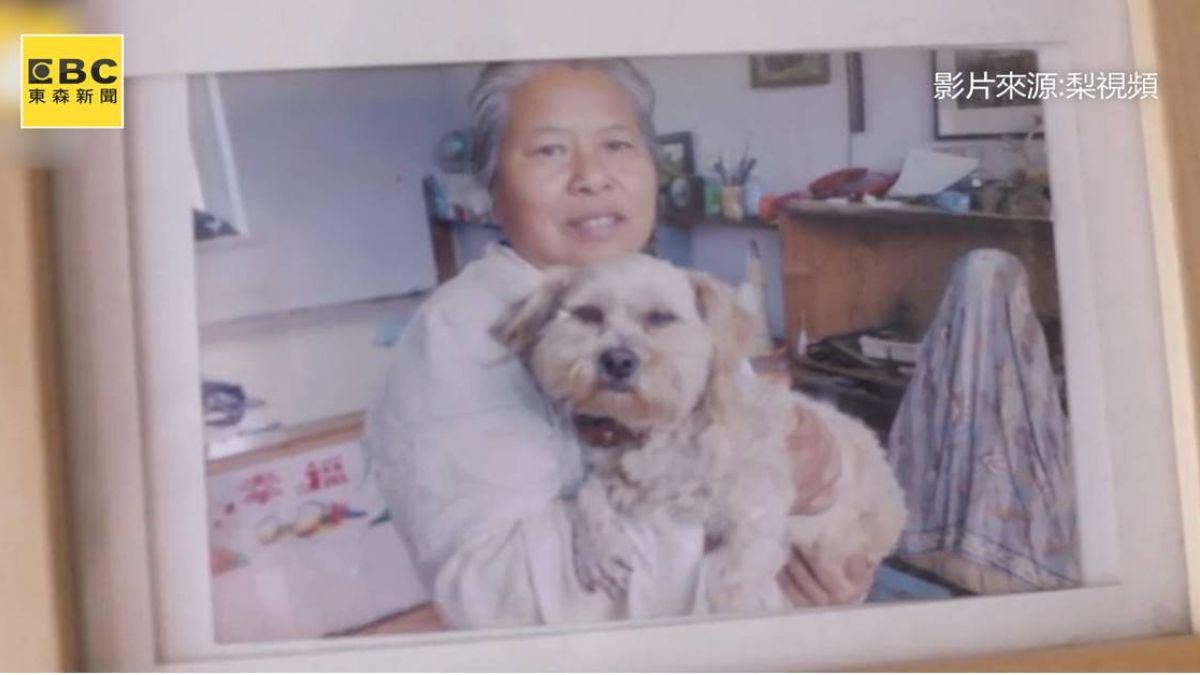 想幫牠延續生命...8年愛犬離世 26K女花170萬「複製」重生