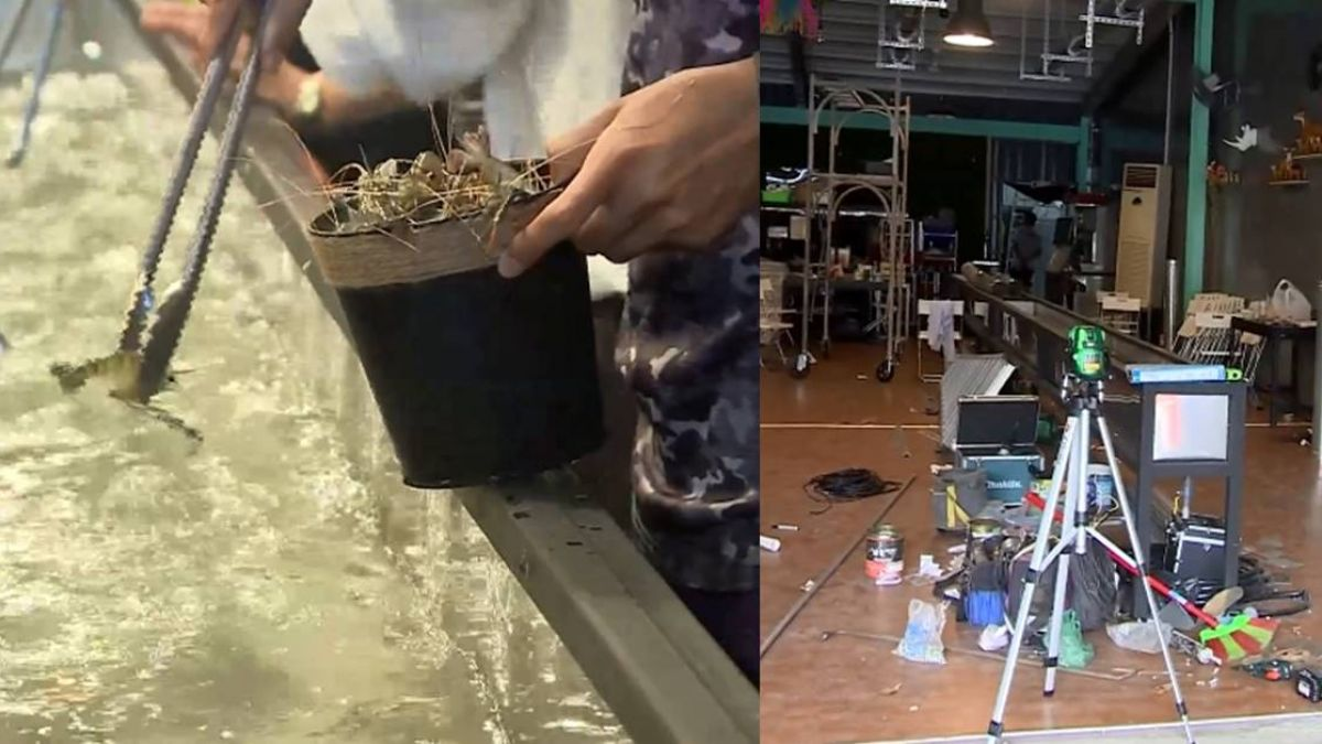 【獨家】暴紅「水道蝦吃到飽」僅開6天…驚傳暫停營業!網:吃垮了?