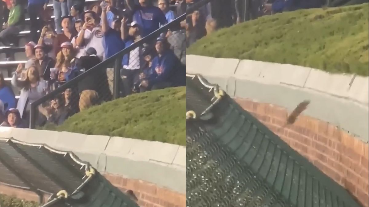 【影片】帥氣奮力一跳 全場球迷只為「他」喝采 結局令人亢奮