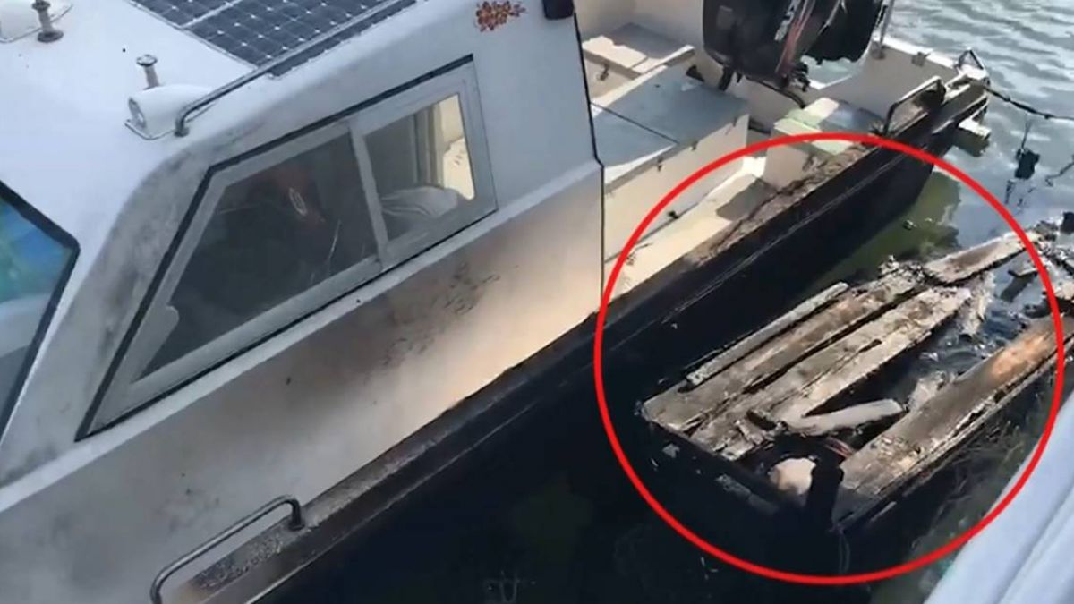 【影片】多麼痛的領悟!亂丟菸蒂釀火燒船 遭求償30萬