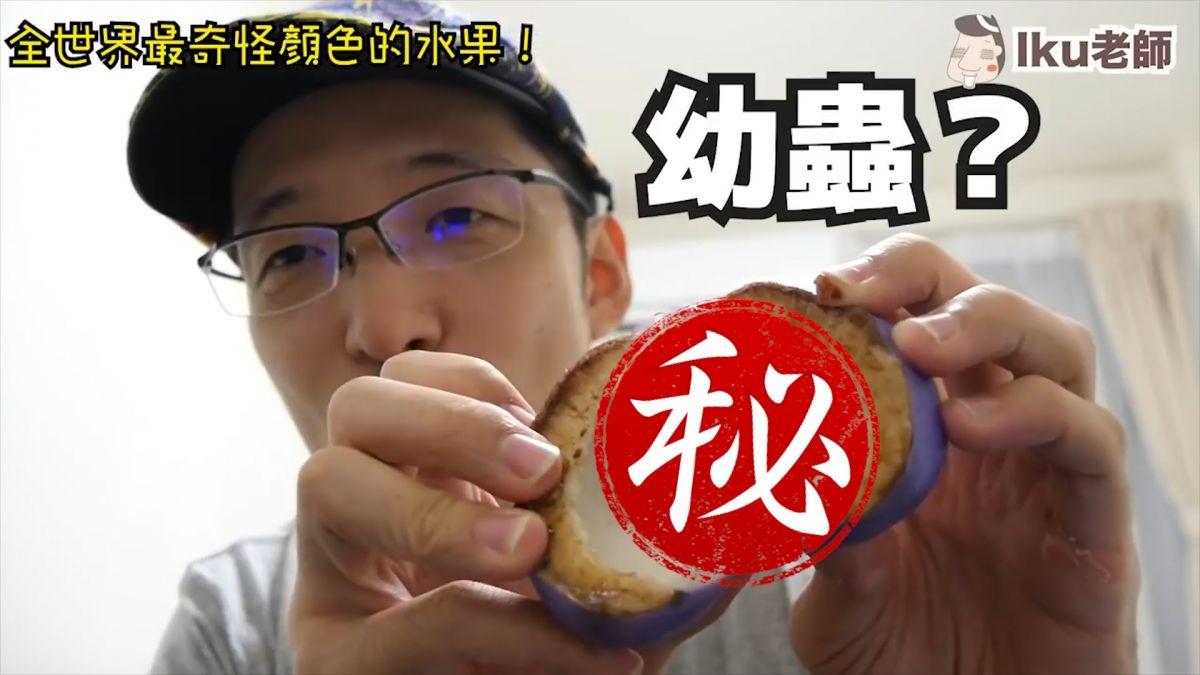 【影片】你一定沒吃過!超特別紫皮水果 白色果肉像幼蟲...網友驚:好像巨蟲果實