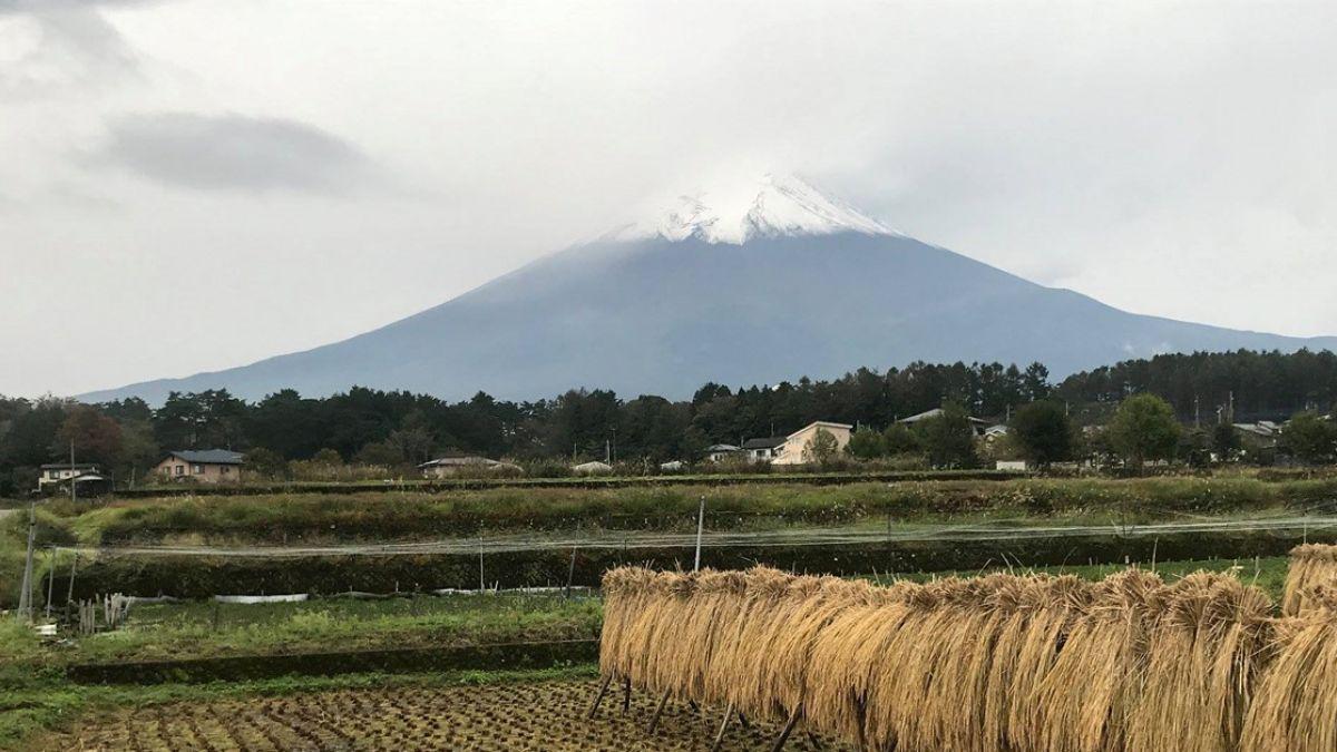 日富士山迎今年首度雪化妝 較去年早11天