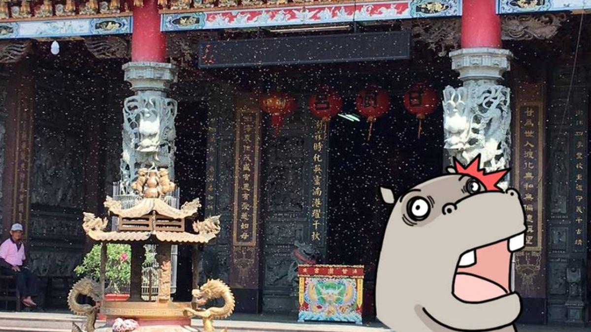 影/睽違3年「甘露媽」蜂群神蹟再現 戲說台灣曾取景